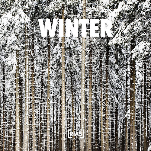 Winter de Various Artists