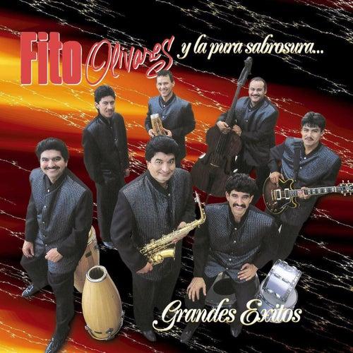 Grandes Exitos by Fito Olivares