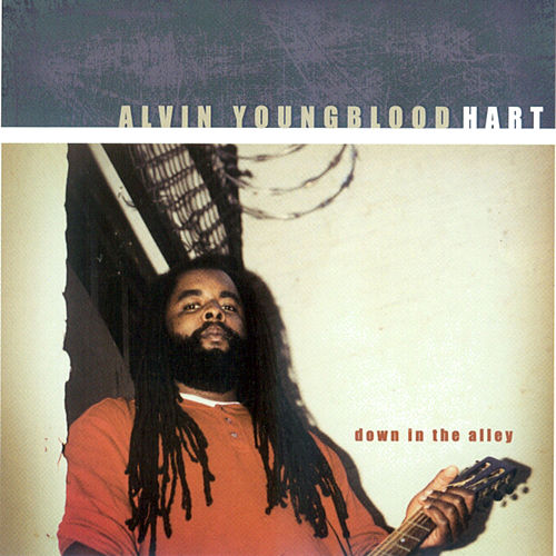 Down in the Alley by Alvin Youngblood Hart