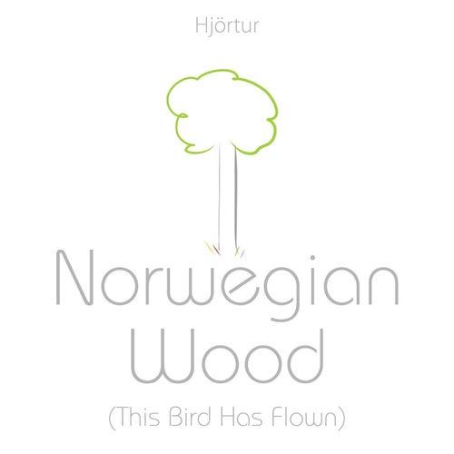 Norwegian Wood (This Bird Has Flown) by Hjortur