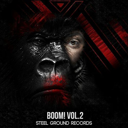Boom! Vol. 2 de Various Artists