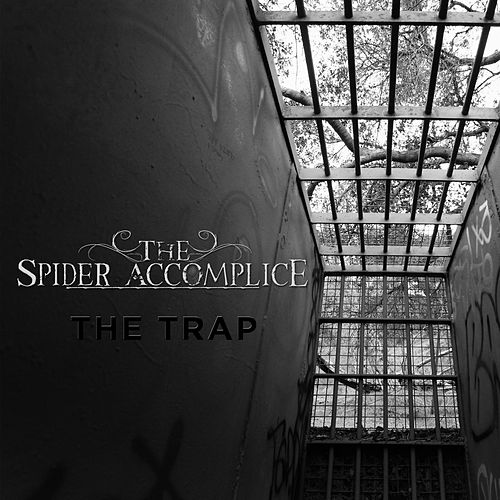 The Trap by The Spider Accomplice
