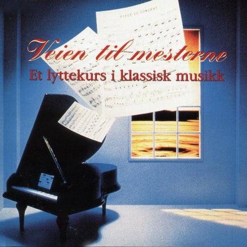 Vein til mesterne et lyttekurs i klassisk musikk by Various Artists