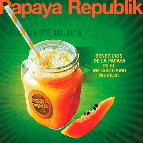 Beneficios de la Papaya en el Metabolismo Musical de Papaya Republik