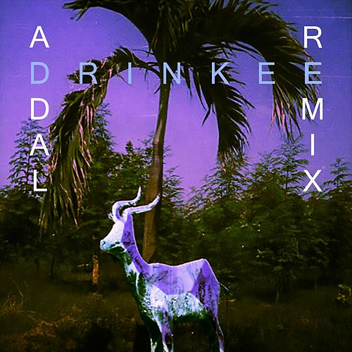 Drinkee (Addal Remix) di Sofi Tukker