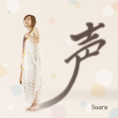 Koe by Suara