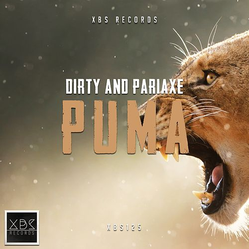 Puma by Dirty