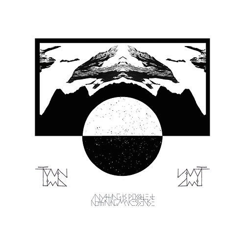 Anything Is Possible And Nothing Makes Sense von Twin Limb