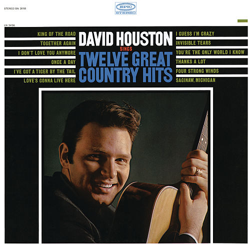 Sings Twelve Great Country Hits von David Houston