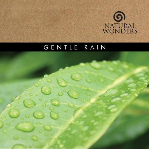 Gentle Rain de David Arkenstone