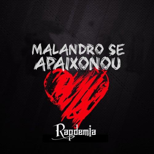 Malandro Se Apaixonou de Rapdemia
