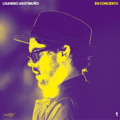 En Concierto 1 de Lisandro Aristimuño