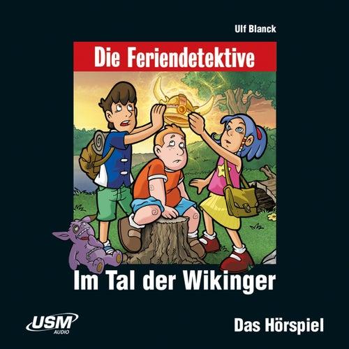 Teil 8: Im Tal der Wikinger by Die Feriendetektive