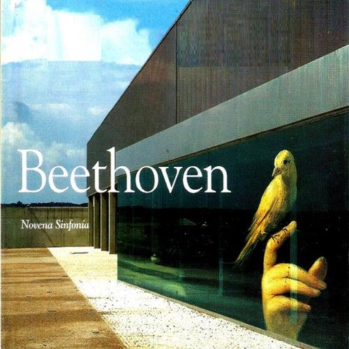Beethoven, Novena Sinfonía de Otto Edelmann
