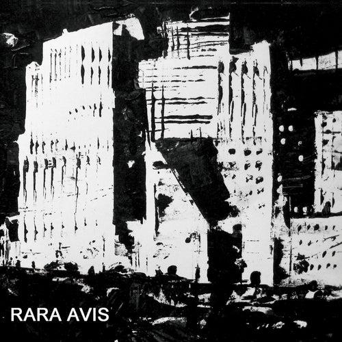 Rare Avis by Ken Vandermark