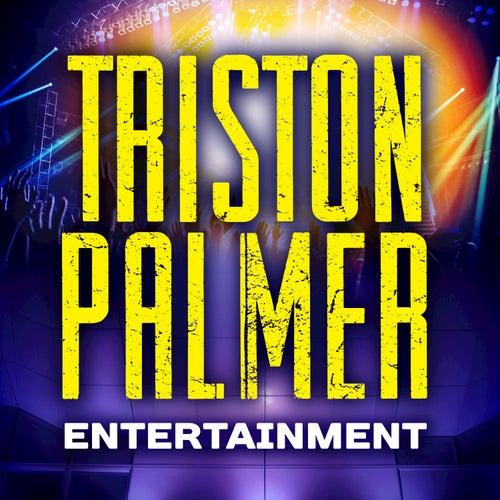 Triston Palmer Entertainment - Single by Triston Palmer