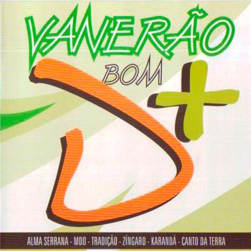 Vanerão Bom D + de Various Artists