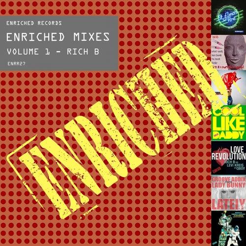 Enriched Mixes, Vol. 1 - Single de Various Artists