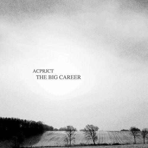 The Big Career von Acprjct