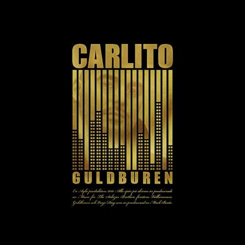 Guldburen de Carlito