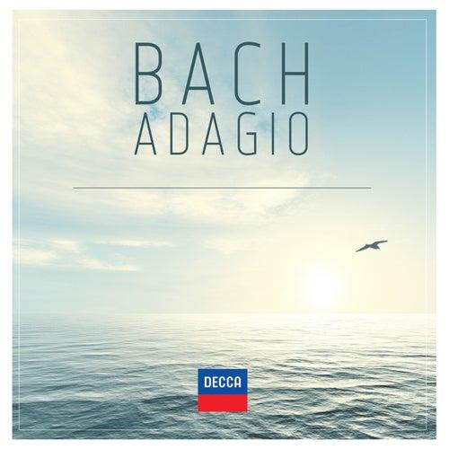 Bach Adagio de Various Artists