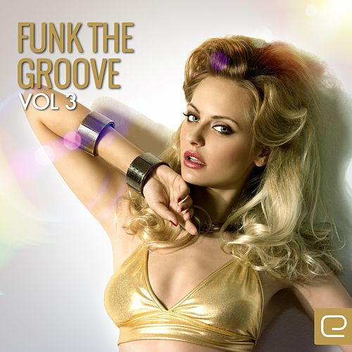 Funk The Groove, Vol. 3 - EP de Various Artists