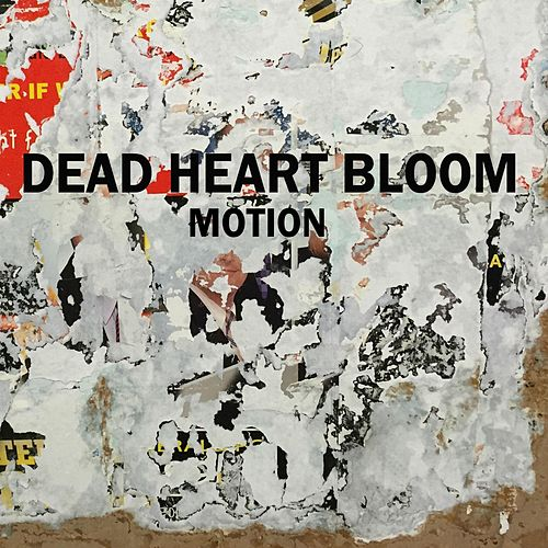 Motion by Dead Heart Bloom