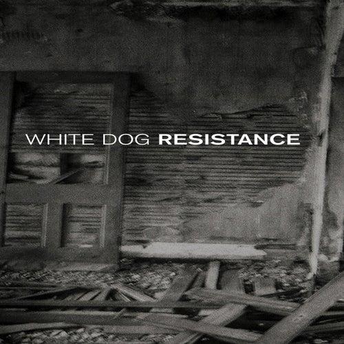 Resistance - Single de Slayer