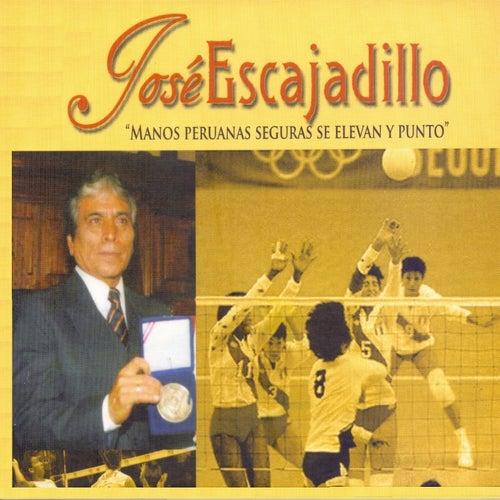 Manos Peruanas Seguras Se Elevan y Punto de José Escajadillo