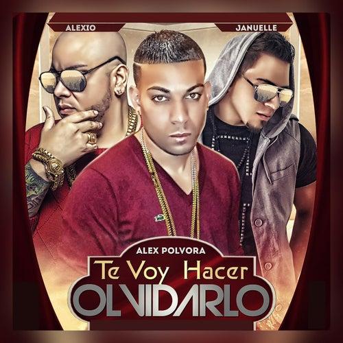 Te Voy Hacer Olvidarlo (feat. Alex Polvora & Alexio La Bruja) von Januelle