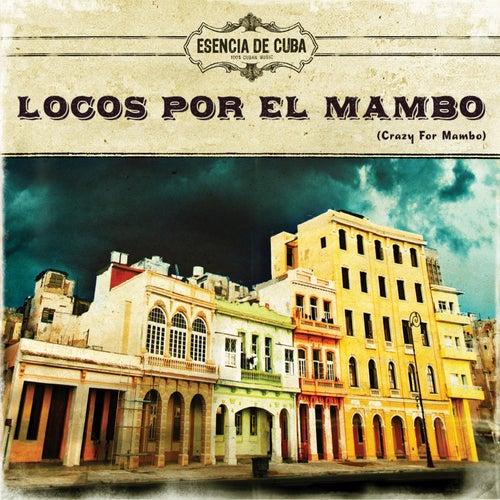 Locos por el Mambo de Various Artists