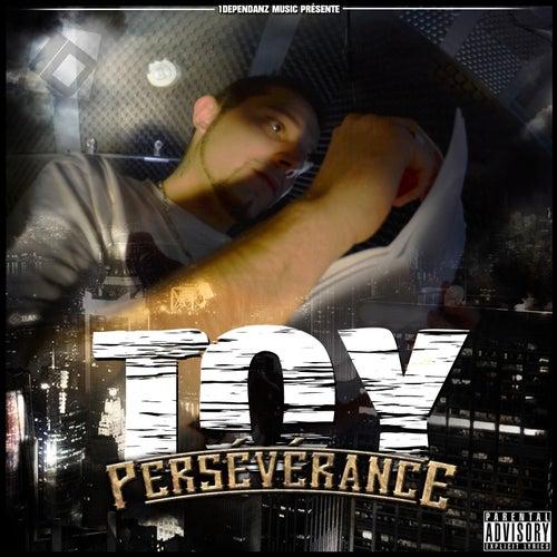 Persévérance by Toy