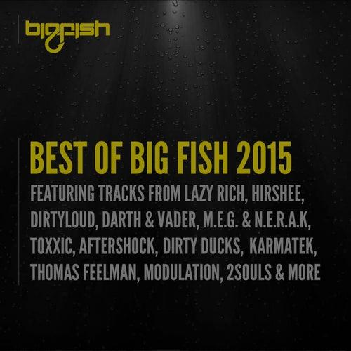 Best of Big Fish 2015 von Various Artists