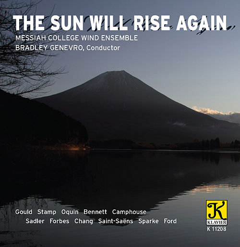 The Sun Will Rise Again von Various Artists