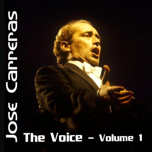 The Voice Volume 1 von Various Artists