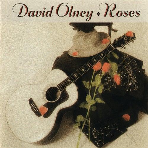 Roses von David Olney