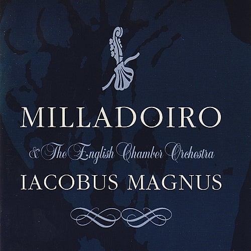 Iacobus Magnus de Milladoiro