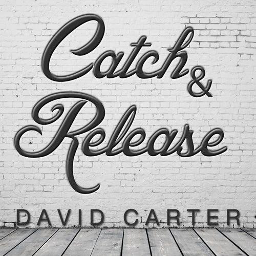 Catch & Release (Remix) von David Carter