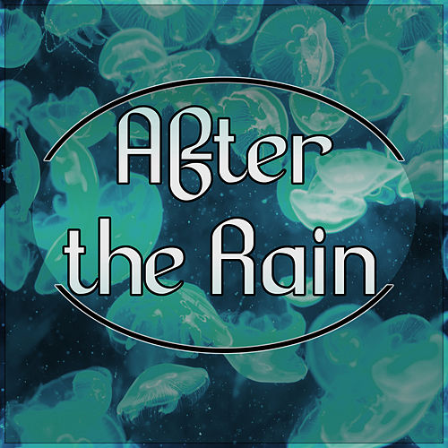 After the Rain - Reiki Therapy, Massage Music, Inner Peace, Relaxation Meditation, Yoga, Spa Wellness, Regeneration, Body Therapy by Interstellar Meditation Music Zone