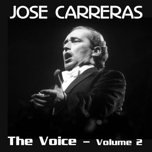 The Voice Volume 2 von Various Artists