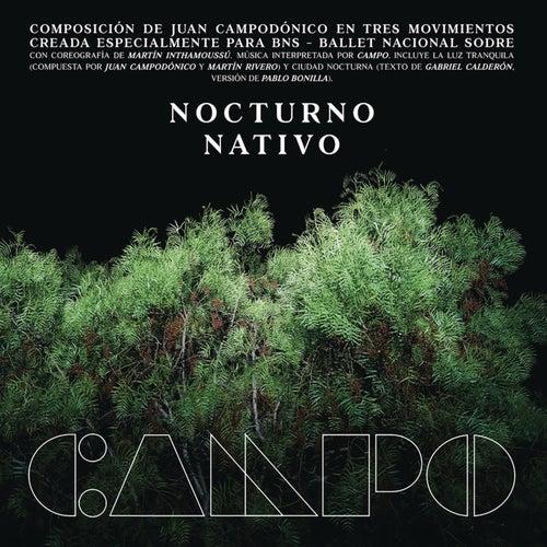 Nocturno de Campo