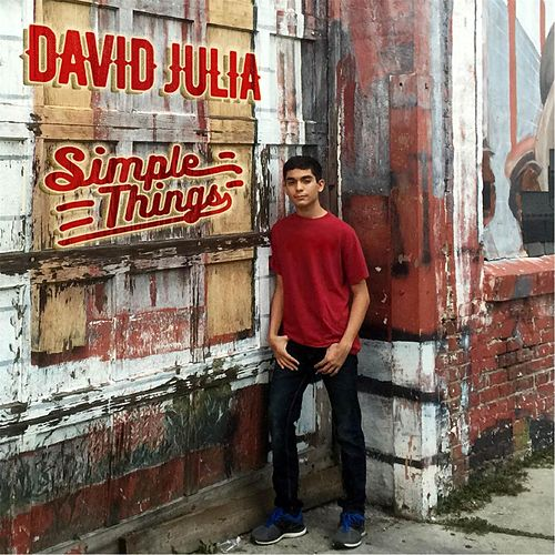 Simple Things by David Julia