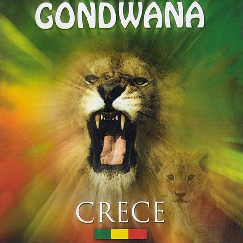 Crece von Gondwana