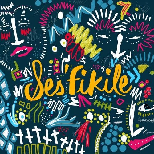 Ses'Fikile by Frankie Valli & The Four Seasons