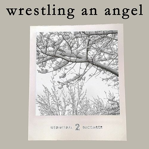 Wrestling An Angel by Carolina Liar