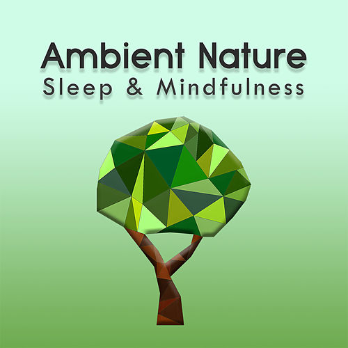 Ambient Nature (Sleep & Mindfulness) by Sleepy Times