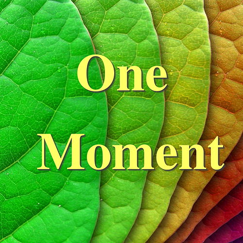 One Moment von Various Artists