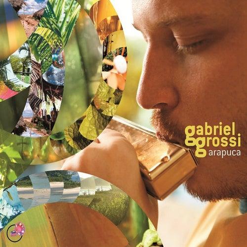 Arapuca von Gabriel Grossi