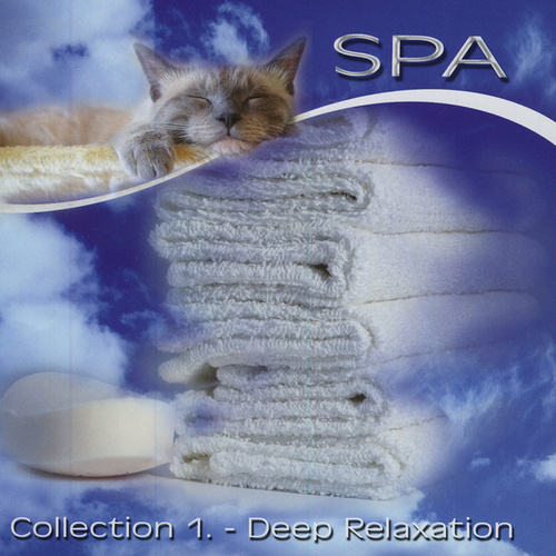 Spa - Collection 1 de Various Artists