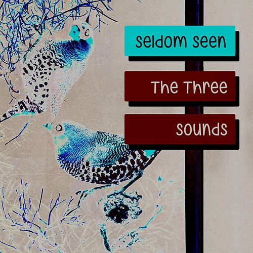 Seldom Seen by The Three Sounds
